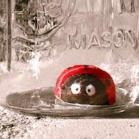 craft kids ladybug mason jar