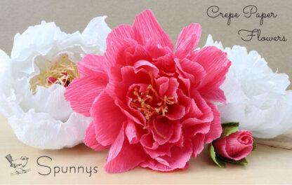 Crepe Paper Flowers pink white peonies Spunnys